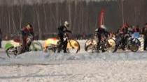 Závody družstev na ledové ploché dráze u Přelouče