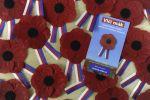 Vlčí máky - symbol Dne válečných veteránů