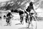 Cyklisté z týmu Willier Triestina